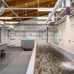 interior photo of downeast institute building lab